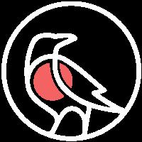 South Bird – Grafik & Webdesign